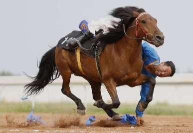 馬文化正在成為內蒙古草原旅遊新亮點