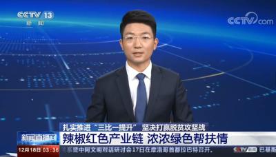 中國陝西洛南:辣椒紅色產業鏈助力脫貧