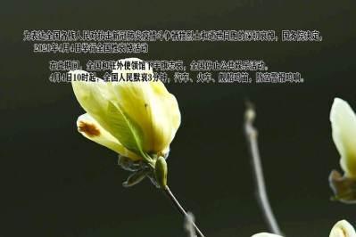 中國國務院公告:2020年4月4日舉行全國性哀悼活動
