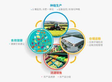 「智慧農業」助中國人端穩飯碗