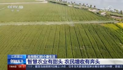 中國崑山:智慧農業有甜頭 到年底農民增收預計超20億元