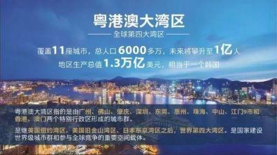 粵港澳大灣區論壇探討香港發展新道路