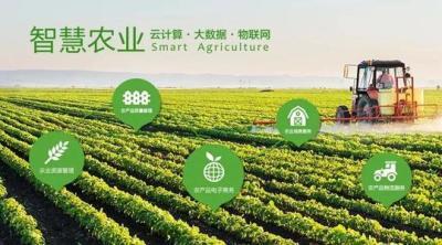 智慧農業助力鄉村振興