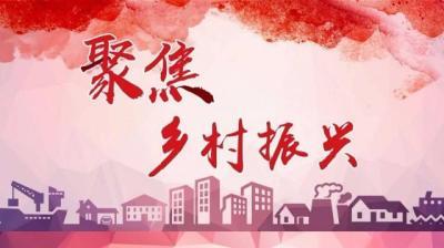 中青網評:夯實基建,做好鄉村振興這篇大文章